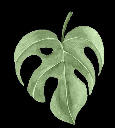 Multiply Leaf